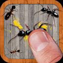 مورچه کش