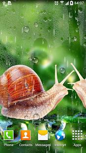 نرم افزار اندروید پس زمینه زنده بارش باران - Rain Live Wallpaper