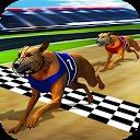 مسابقه سگ های وحشی