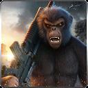 جهان میمون