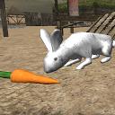 شبیه ساز خرگوش