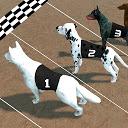 مسابقه سگ های دیوانه