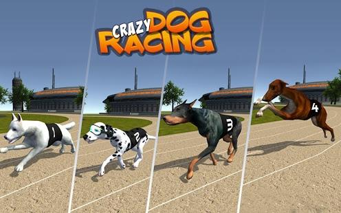 بازی اندروید مسابقه سگ های دیوانه - Crazy Dog Racing
