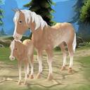 بهشت اسب - روستای رویایی من