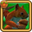 شبیه ساز سنجاب