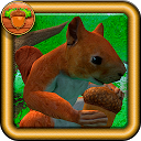 بازی شبیه ساز سنجاب