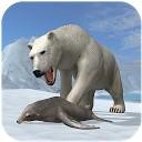 خرس قطبی شمال