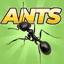 بازی مورچه های وحشی - شبیه ساز کلونی
