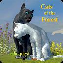گربه های جنگل