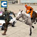 قهرمان اسب سوار پلیس