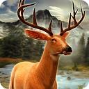 شکار گوزن در جنگل 2016