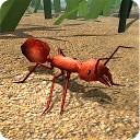 شبیه ساز مورچه سرخ