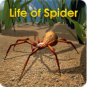بازی زندگی عنکبوتی