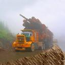 شبیه ساز حمل و نقل کامیون سنگین