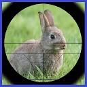 شکارچی خرگوش