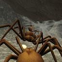 شبیه ساز لانه عنکبوت - بازی حشرات