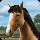 اسب من