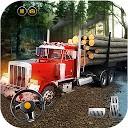 راننده کامیون آمریکا