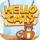 سلام گربه
