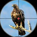 تیرانداز پرندگان کویر