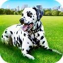 شبیه ساز زندگی سگ دالیمشن