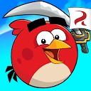 مبارزه پرندگان خشمگین
