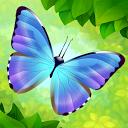 بال بال زدن پروانه