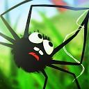 مشکل عنکبوت
