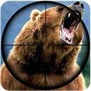 شکار خرس - تک تیرانداز