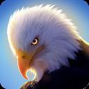 شبیه ساز عقاب