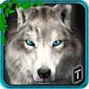 ماجراهای گرگ