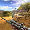 برخورد طمعه شکار - بازی کشتن - شبیه ساز شلیک