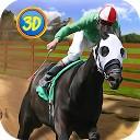 سوارکاری - اسب مسابقه