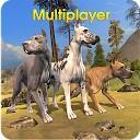 دنیای بزرگ چند نفره سگ
