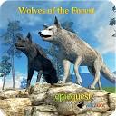 گرگ جنگل