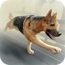 زامبی سگ