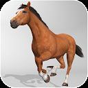 شبیه ساز سه بعدی اسب