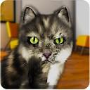 صحبت کردن خنده دار گربه